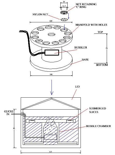 Brain Slice Keeper 12, Schematic