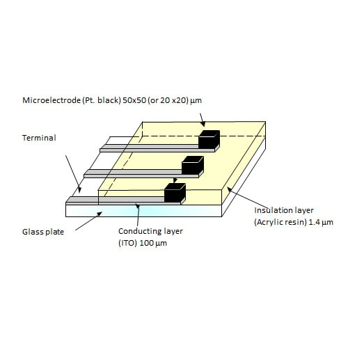 Microelectrode