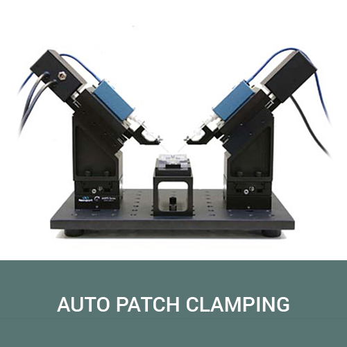 Automated Patch Clamping