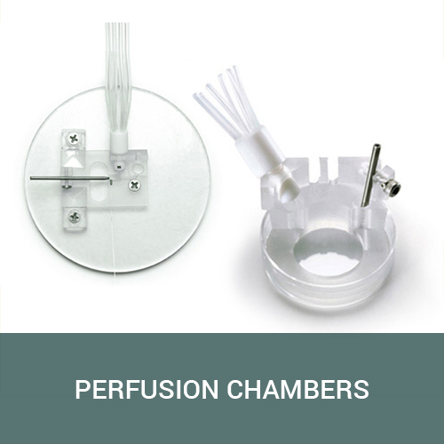 Perfusion Chambers